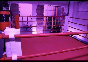 Kampfkunst Schule